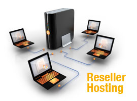 ... web hosting services. Freelancers who have a good networking and wish